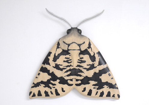 Lichen Moth (small)